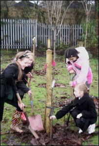 Jess and her class mates tree planting