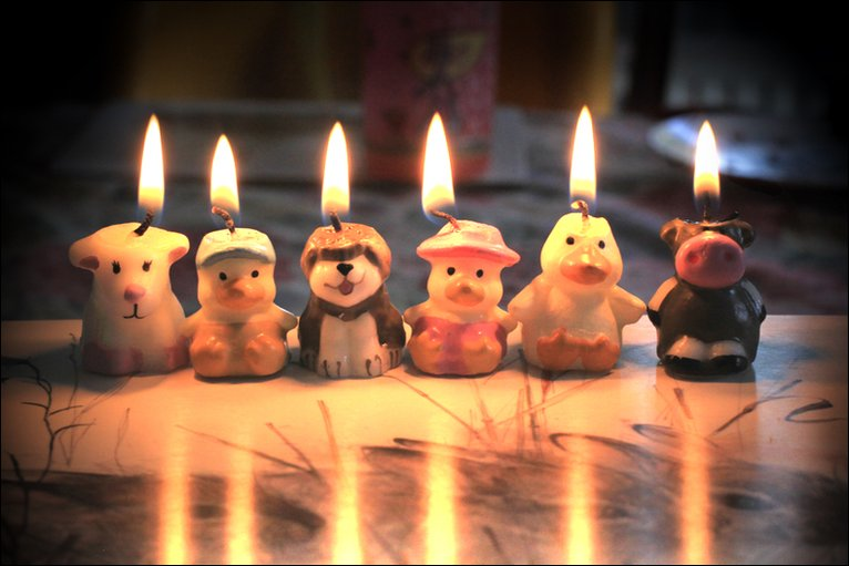 ... cake, just these cute little candles remained as evidence of a fun