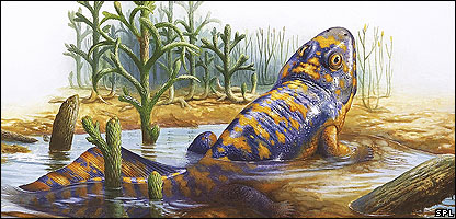 An artist's impression of the unknown vertebrates