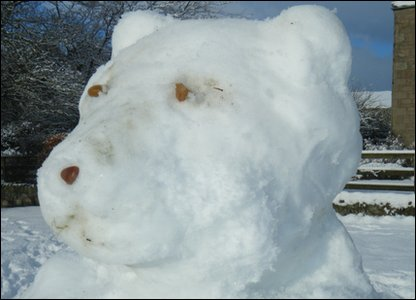 Polar bear made of snow