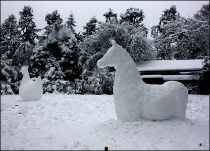 Snow horse and snow chicken