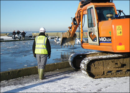 The digger about to free the swans from the ice
