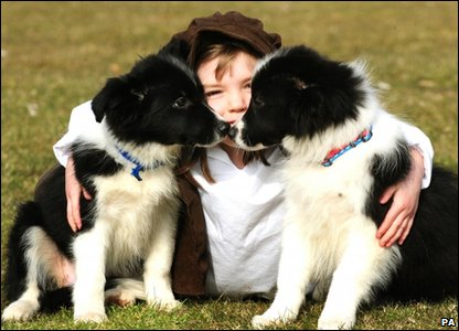 Louise from Shropshire with Border Collie puppies Maisie and Spud