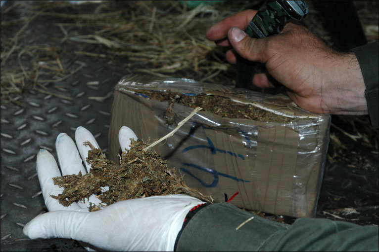 BBC News - In pictures: Colombian anti-narcotics police on a raid
