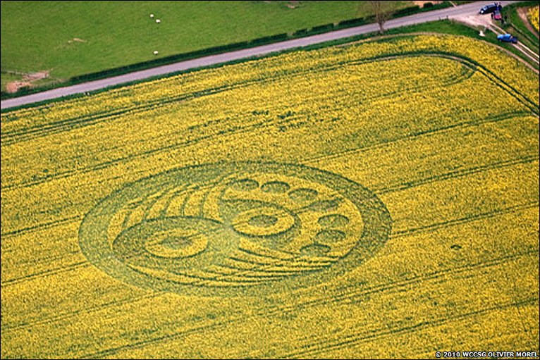 Bbc first crop circles of the year crop circle old sarum wiltshire may 2010 publicscrutiny Choice Image