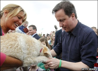 David Cameron shakes paws with a dog