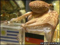 Paul the octopus shows how it's done