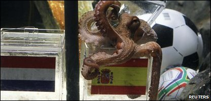 Paul the octopus rightly predicts the outcome of the World Cup final.