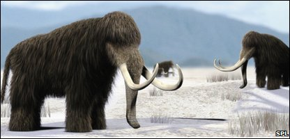 Artist's impression of mammoths