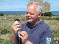 UK's oldest Arctic tern with the National Trust's John Walton, who ringed it 30 years ago