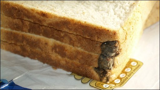 The mouse found in the loaf of bread