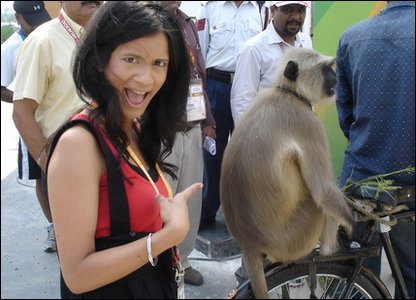 Langur on a bike