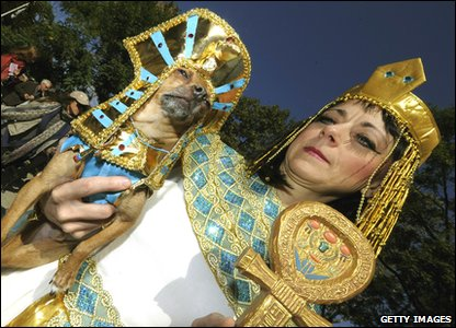 Eli the chihuahua and owner dress up as Cleopatra.