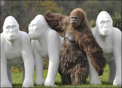 An animatronics gorilla posing next to sculptures to launch celebrations for Bristol Zoo's 175th birthday.