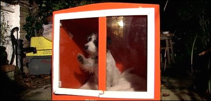 Dog kennel invented to keep firework noise out