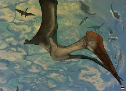 A drawn image of a pterosaur