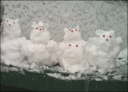 Anika and Maya in Croydon made snow bears.