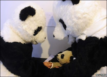 Two scientists dressed up as pandas with a real life panda cub in their arms.