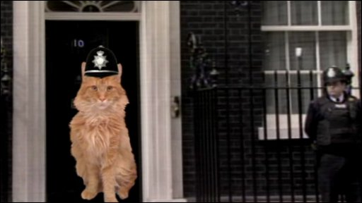 Time for 10 Downing Street to get a cat?