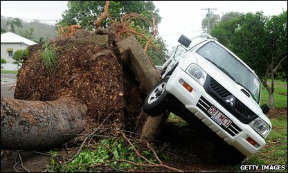 Car and tree blown over by Cyclone Yasi in Townsville, Australia