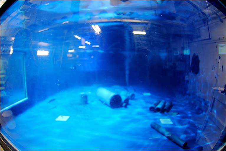 Bbc In Pictures Backstage At Plymouth 39 S Aquarium