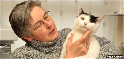 Basil the cat with owner Sue