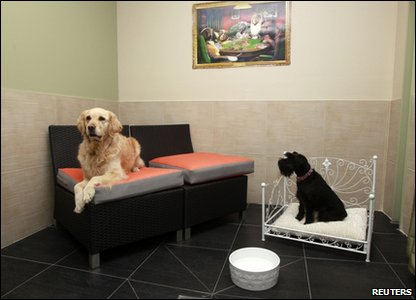 Guests Cleo (left) and Belle are seen in a room at the hotel for dogs in Vincennes, near Paris, France