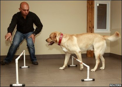 Stan Burun, a dog behaviour specialist, trains guest Ulysse in the hotel's games room