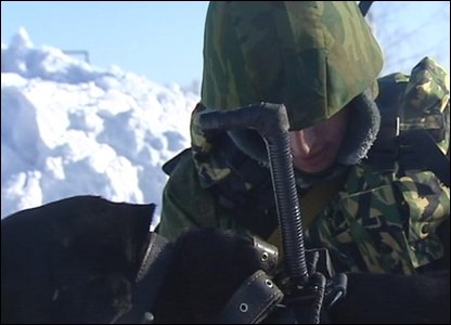The Russian army have recruited some new four legged friends to help sniff out danger!