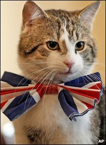 Larry the Downing Street cat in a Union Jack tie