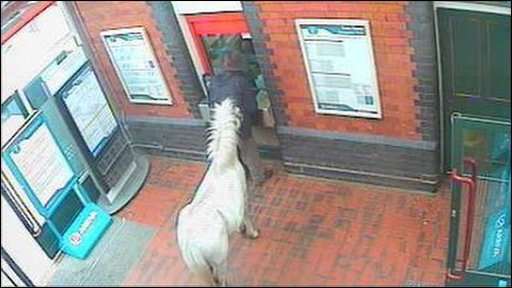 A man trying to buy a train ticket with his horse at Wrexham General station