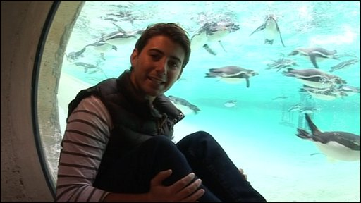 Ricky with penguins