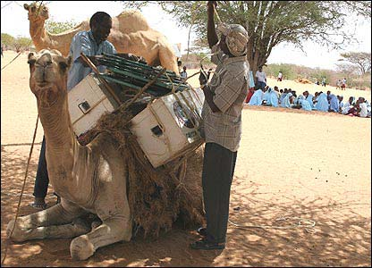 「ケニアの遊牧民 ラクダの図書館」の画像検索結果