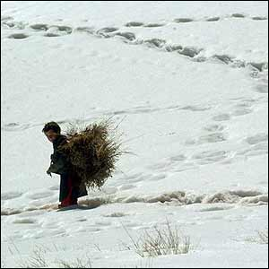 http://news.bbc.co.uk/nol/shared/spl/hi/pop_ups/05/south_asia_snow_engulfs_central_afghanistan/img/1.jpg