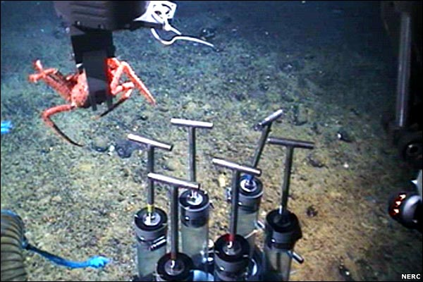"As well as taking films and still images, Isis has sample-collectors, manoeuvred by scientists in the control room onboard the ""mothership"". Here, they grab a king crab, so it can be returned to the surface and studied."