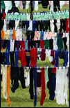 Sock hanging contest
