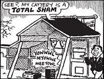 Sham cattery