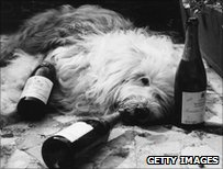 Dulux dog with champagne bottles, 1972