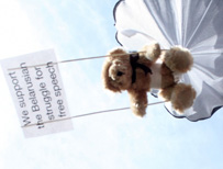 Parachuting bear with pro-democracy slogan