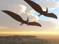 Two pterosaurs in the sky
