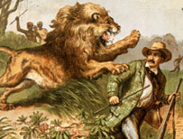 David Livingstone attacked by a lion