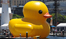 Fake yellow duck on water