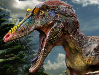 Newly-discovered species of Tyrannosaur