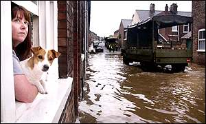 Woman and dog looking out of window onto floods