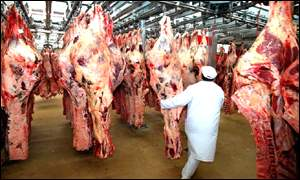 Beef carcass inspection