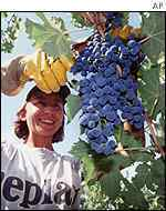 Grape-picker