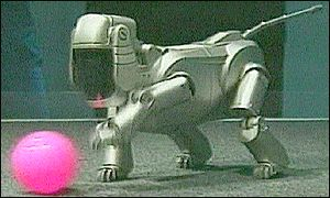 Sony's robotic dog