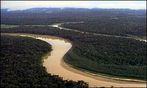 view of Amazon rainforest