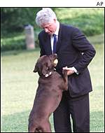 President Clinton with Buddy