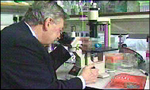 Sir Walter Bodmer - a geneticist who has been researching causes of cancer for 20 years